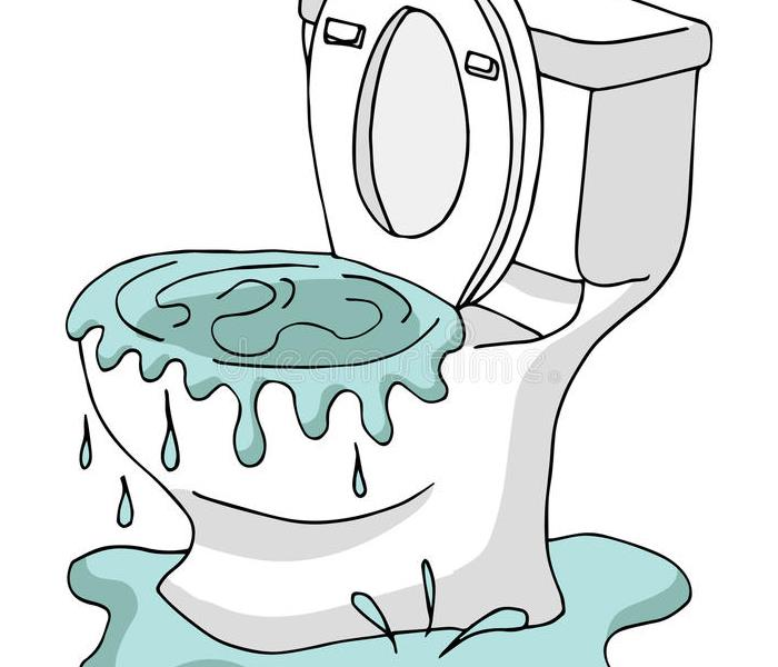 Water Damage Has YOUR Leaky TOILET got you Down in the Dumps?